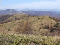 八子ヶ峰稜線を行く