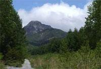 御小屋山へと向かう道から阿弥陀岳が正面に見える