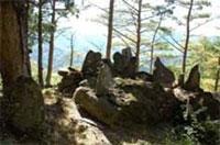 虎尾神社跡