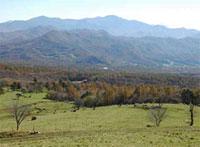八ヶ岳牧場からの展望